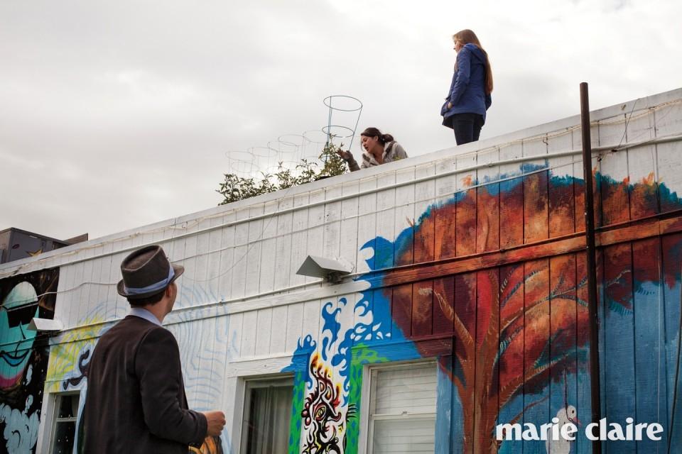 인터넷 보안회사를 운영하는 아도니스 가이타치스(Adonis Gaitatzis)가 옥상에서 식물을 돌보고 있는 다이애나 브룩스(Diana Brooks)와 에밀리 에릭슨을 올려다보고 있다. 셋 다 호스텔에 가장 오래된 입주자들이다.