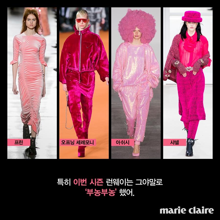 꿀팁 핑크-4