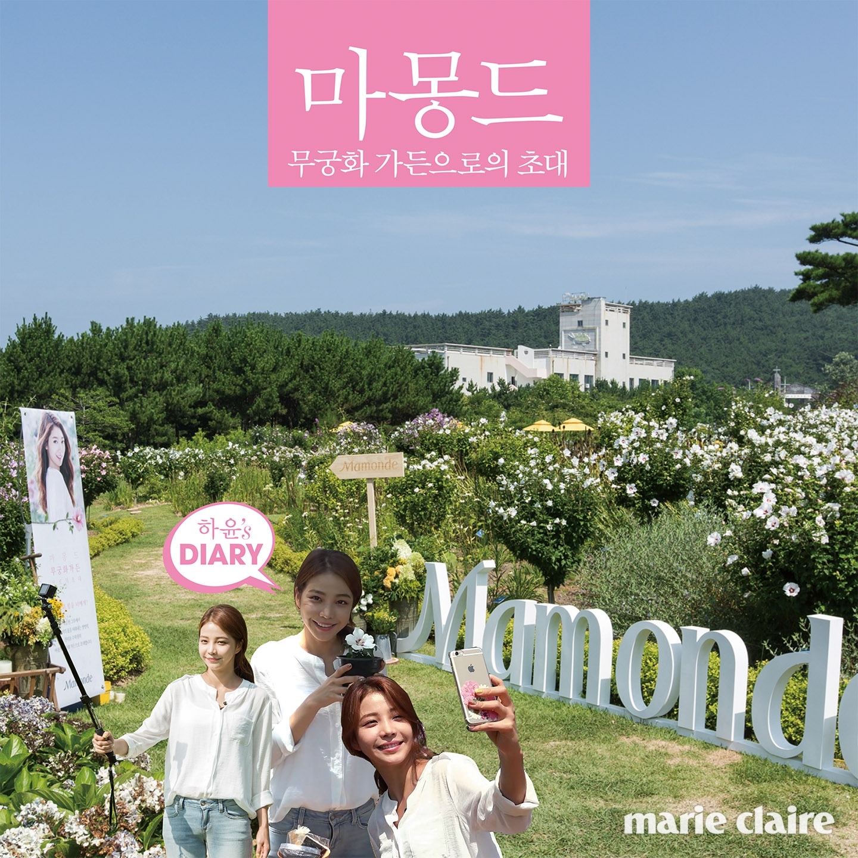 mamonde_1