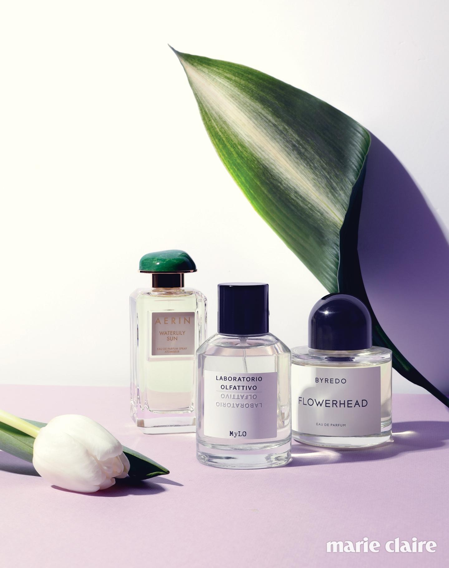 scent3