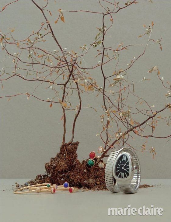 시계 불가리 피아제 반클리프아펠 불가리시계 피아제시계