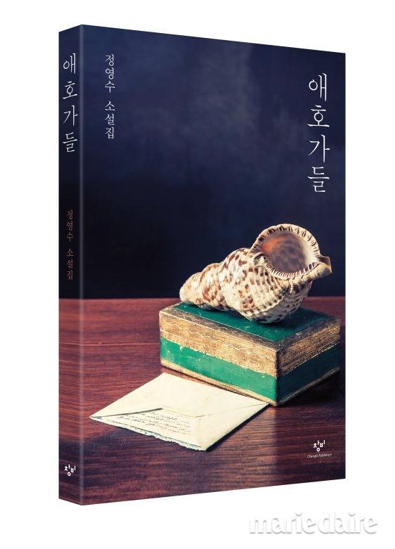 책 소설 소설책 정영수 애호가들