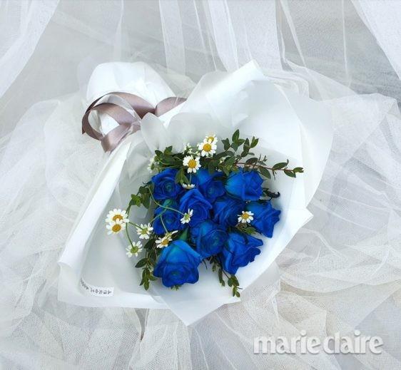 성년의날 파란 장미