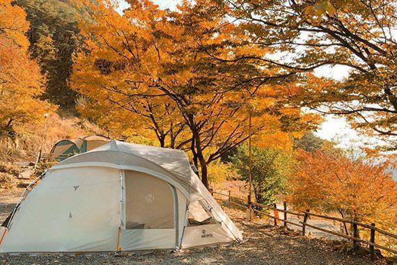 가을 캠핑 여행 서당골 캠핑장